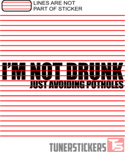 Im Not Drunk Just Avoiding Potholes